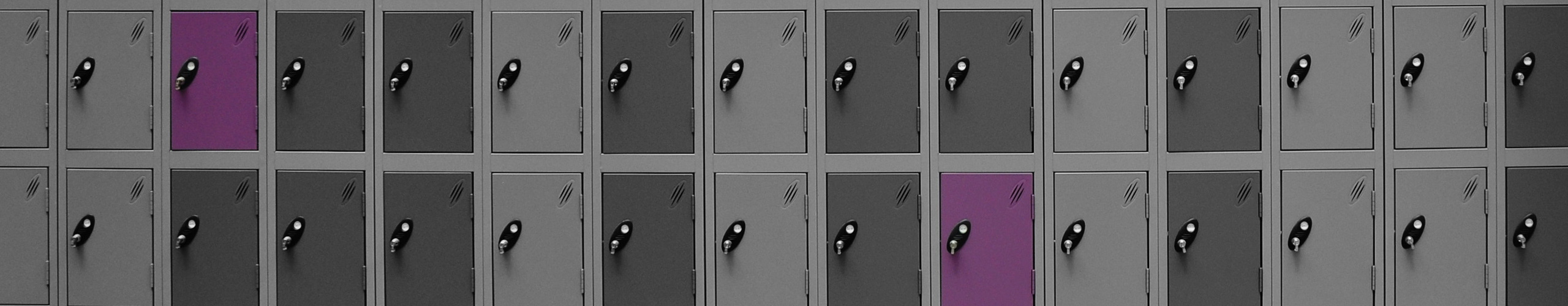 Probe-Multi-Door-Lockers
